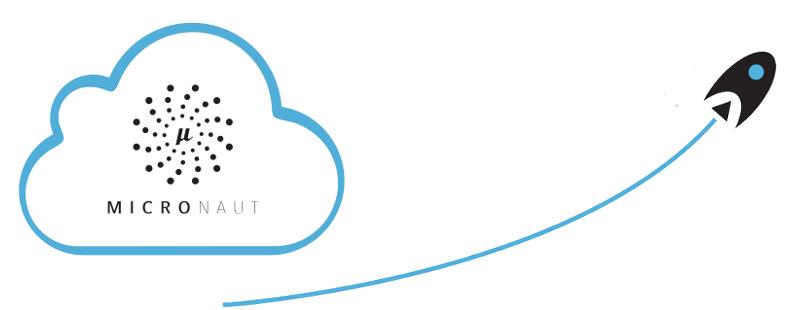 micronaut framework logo