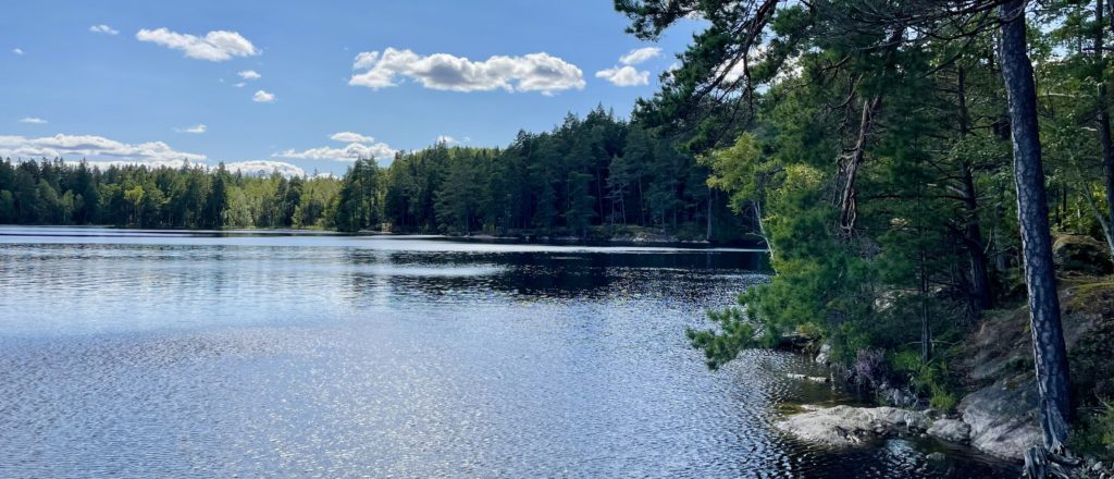 A Swedish lake from a software engineer